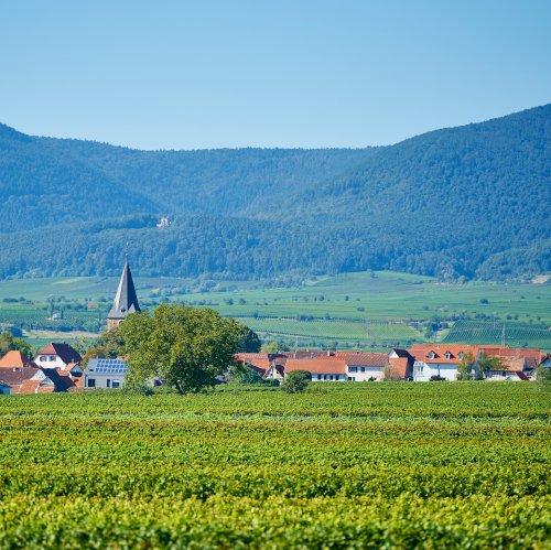 Wunderschöne Pfalz